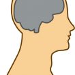 brain-154297_640